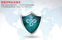 中科网威ANYSEC-VPN安全网关