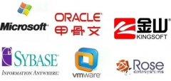 微软Oracle通用软件、操作系统、办公软件、双机热备Ros